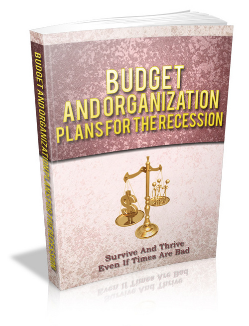 Product picture Budget And Organization Plans For The Recession